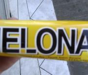 #05_Melona